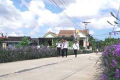 Các cấp hội nông dân huyện Lệ Thủy thi đua xây dựng nông thôn mới