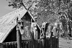 Central Highlands art of wooden sculptures