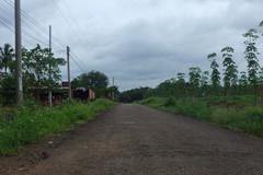 NTM Bình Phước: 100% số xã có điện lưới quốc gia