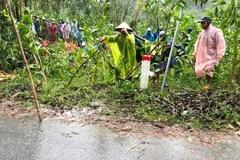 Sạt lở đất ở Quảng Nam, người phụ nữ bị vùi chết