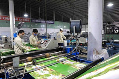 Vietnam boasts huge opportunities to attract foreign investment: WB official
