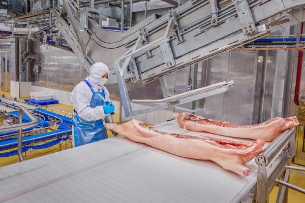 Bất ngờ trước quy định chăn nuôi và kiểm dịch của thịt heo MEATDeli