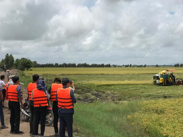 Dấu ấn Tân Long trên đường đua thị trường lúa gạo