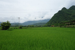 VN's updated climate goals aim at maximising the co-benefits of climate action