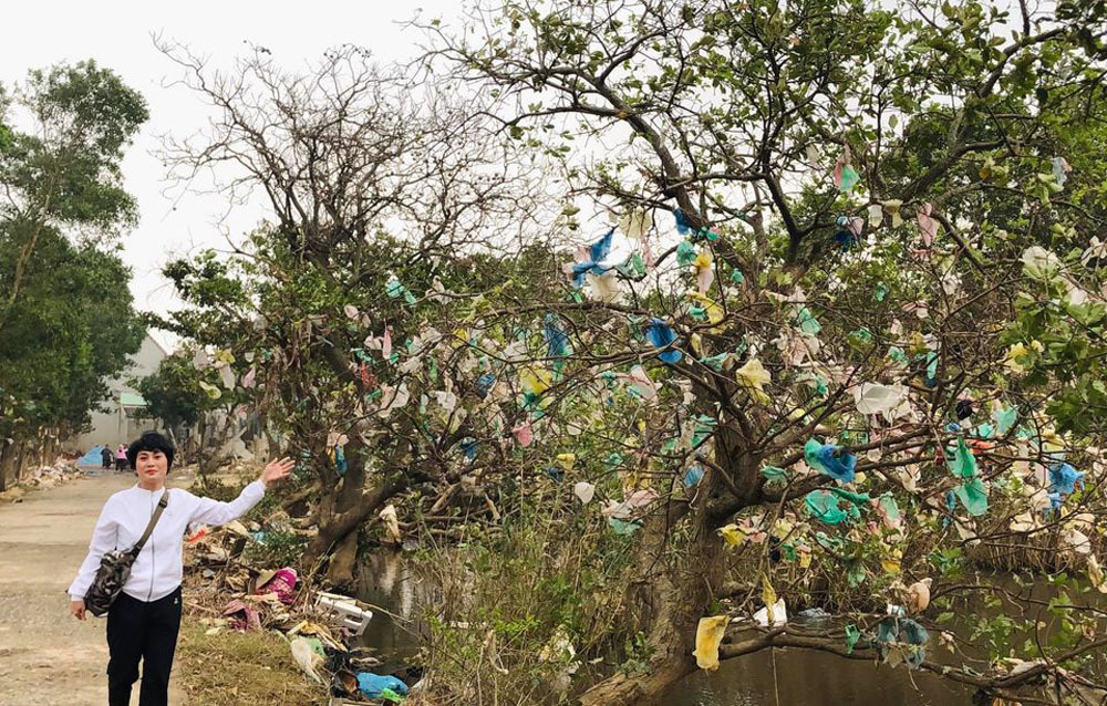 Chi tiền thu mua túi nilon trên cây để dọn rác cho vùng lũ