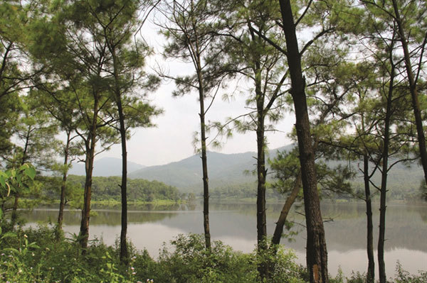 Romantic lake offers cool tranquility in Quang Ninh