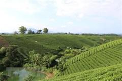 Điều tra nông thôn, nông nghiệp giữa kỳ 2020 có nhiều điểm mới