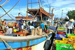 Đông Hải đẩy mạnh phong trào thi đua xây dựng NTM