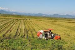 """Quảng Bình: """"Nông nghiệp-nông dân-nông thôn là chiến lược, NTM là căn bản"""""""