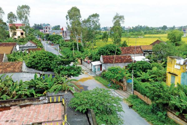 Lập Hội đồng thẩm định Báo cáo đề xuất chủ trương đầu tư xây dựng nông thôn mới
