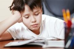 GS Mỹ: 'Bài tập về nhà hoàn toàn không có tác dụng với học sinh tiểu học'
