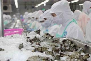Thương mại Việt Nam và Trung Quốc đạt mốc 100 tỷ USD