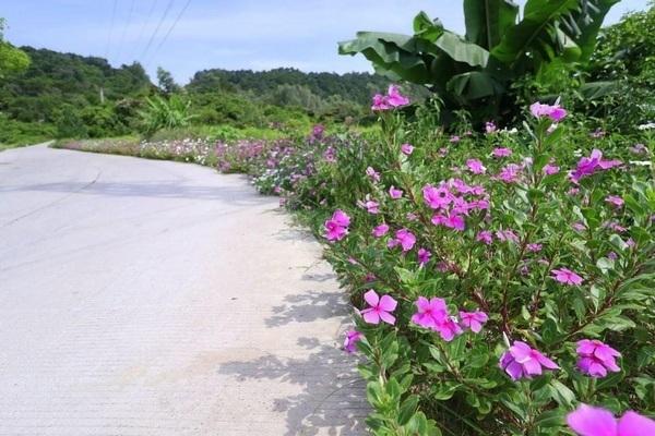 Xã đảo Đồng Tiến về đích nông thôn mới nâng cao