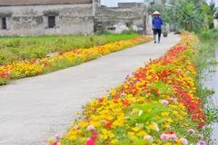 Bảo đảm tiêu chí môi trường trong xây dựng nông thôn mới