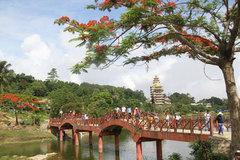 Mekong Delta provinces explore ways to drag tourism out of slump