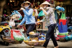 Chuyên gia góp bàn với việc thống kê và quản lý khu vực NOE của Việt Nam