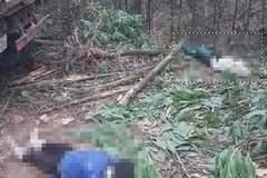 Xe tải đi lùi cán chết 2 người phụ nữ ở Quảng Ninh