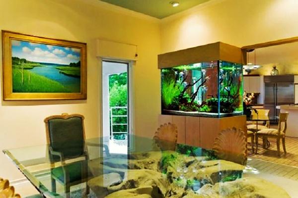Cách đặt bể cá trong phòng khách giúp gia chủ 'chuyển họa thành may'