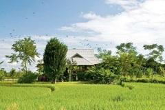 5 ngôi nhà 'đáng sống' thoải mái về cả vật chất lẫn tinh thần