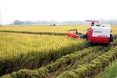 Hải Phòng nghiêm túc thực hiện Điều tra nông thôn, nông nghiệp giữa kỳ năm 2020