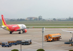 Phát hiện 6 con trâu trong khu bay cảng hàng không Cát Bi