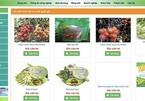 Vietnamese farmers sell farm produce via smartphones