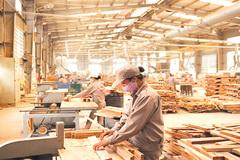 Thế mạnh Việt lập kỷ lục, đầu năm thu về gần 4 tỷ USD