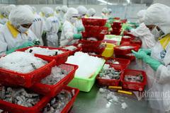 Thế mạnh Việt Nam chốt con số kỷ lục 60 tỷ USD