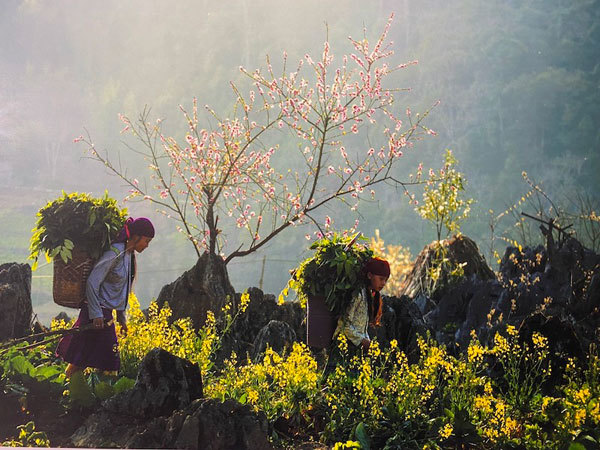 vietnam in photos,photography