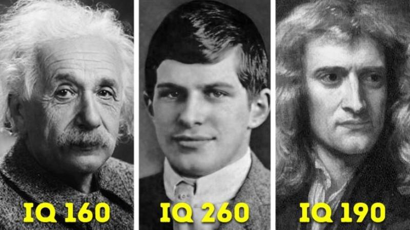 Cuộc đời bất hạnh của người đàn ông có chỉ số IQ cao nhất thế giới