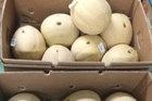 Đi siêu thị tiện tay chọc thủng 13 quả dưa, người phụ nữ bị cảnh sát tóm về đồn