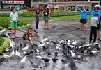 Saigoneses take their children to church to feed pigeons
