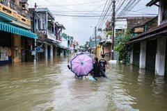 Lukewarm catastrophe insurance segment