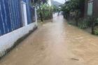 Hơn 15.000 sinh viên Nha Trang chuyển qua học trực tuyến vì mưa lũ
