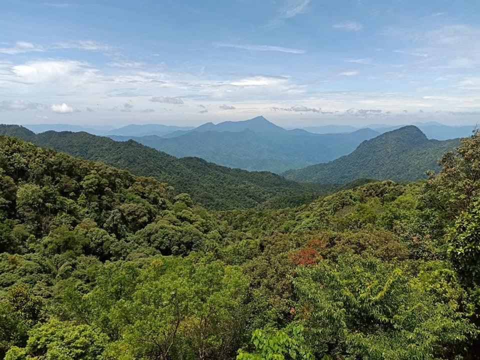 Quyết giữ rừng, Bộ Nông nghiệp từ chối loạt dự án chuyển đổi
