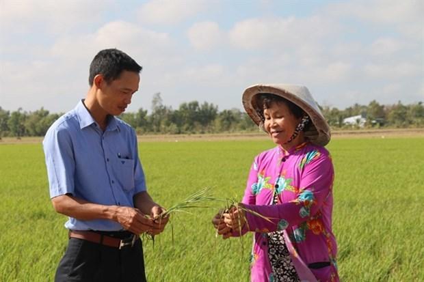 social news,vietnamnet bridge,english news