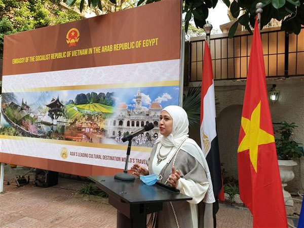 Vietnam-Egypt relations,Egypt