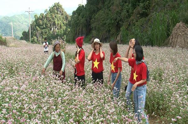 COVID-19,Vietnam tourism