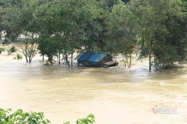 Thủy điện xả lũ cuốn trôi hàng chục bè cá của dân ở Đắk Nông