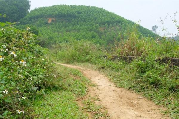 Người đàn ông bị cắt 'của quý' trên đồi cao su ở Thanh Hóa