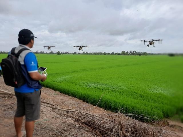 Xem máy bay điều khiển từ xa 500 triệu đồng chăm sóc đồng ruộng