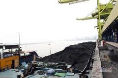 Nhập khẩu năng lượng ngày càng lớn, xoay chuyển để phát triển bền vững