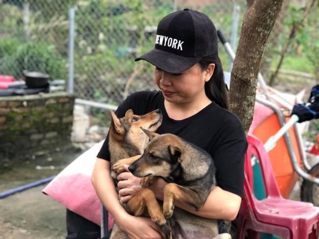 Người phụ nữ bán nhà ra vùng ven để cứu hàng trăm chú chó, mèo bị bỏ rơi