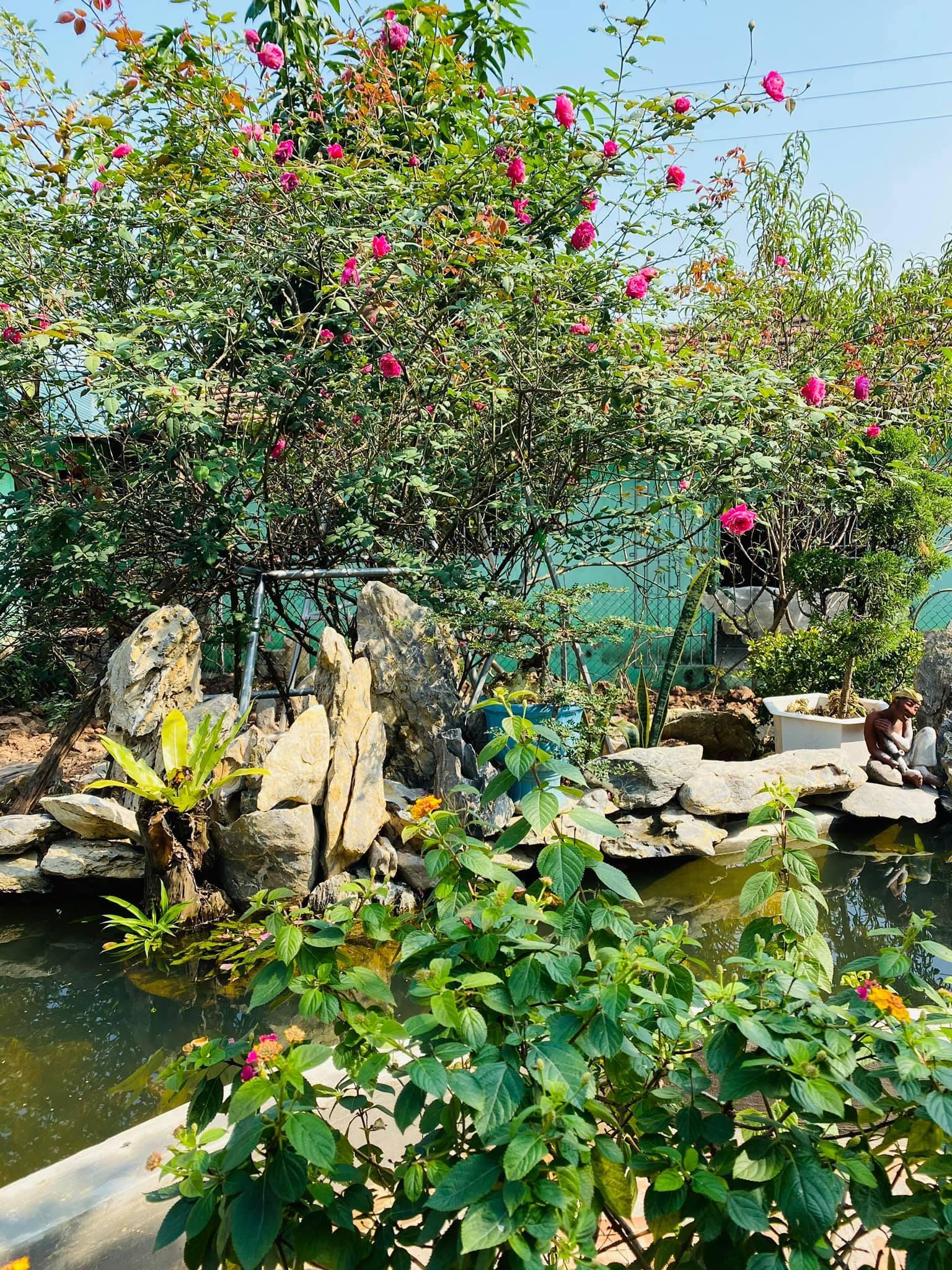 Nhà vườn ngập hoa trái của NSND Minh Hằng và tiến sĩ Toán học