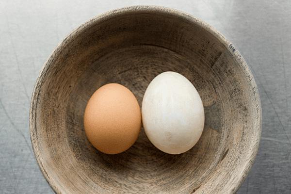 Lý do trứng vịt tốt hơn trứng gà