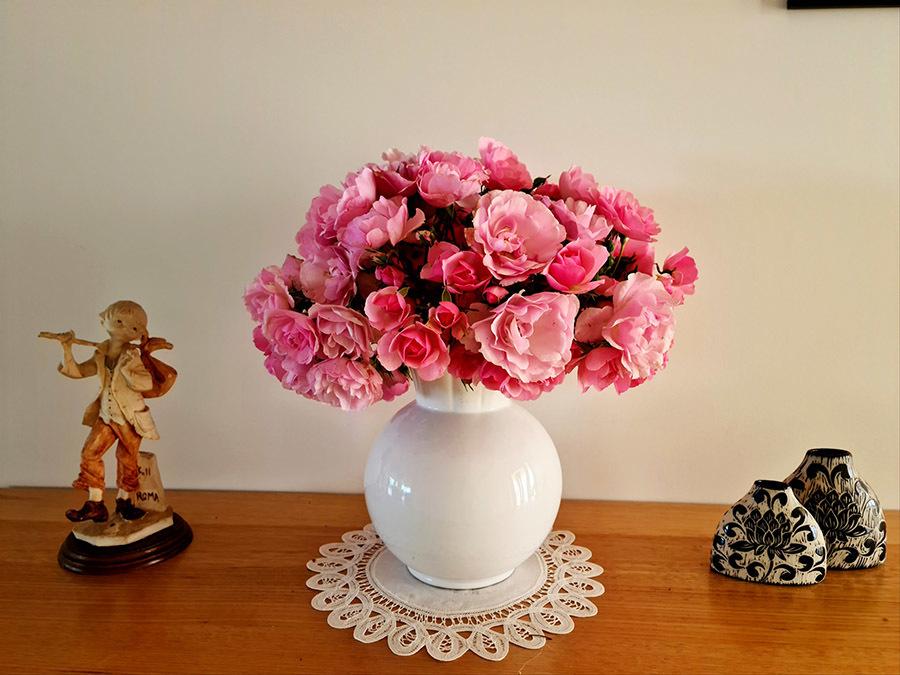 Vườn hoa rộng 700m2 nở quanh năm của cô dâu Việt ở Úc
