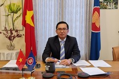 Vietnam leaves deep imprint on ASEAN's 2020 cooperation: Ambassador