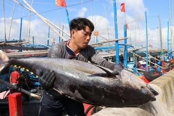 Trung Quốc đề xuất thiết lập đối tác kinh tế biển xanh với ASEAN