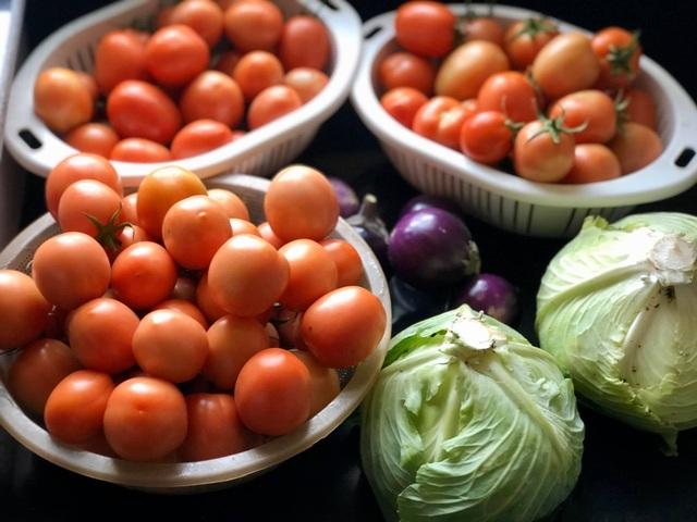 Ông bố Hà Nội chi 70 triệu đồng trồng rau, quả sai lúc lỉu trên sân thượng