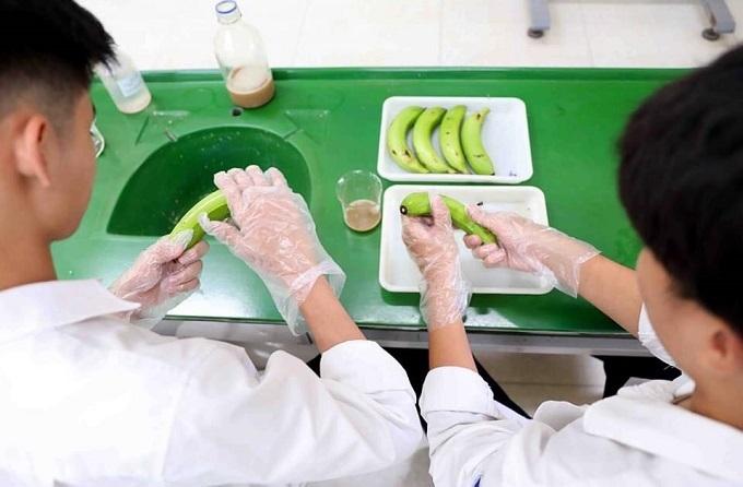 Chế phẩm giúp bảo quản chuối cả tháng của nam sinh cấp III